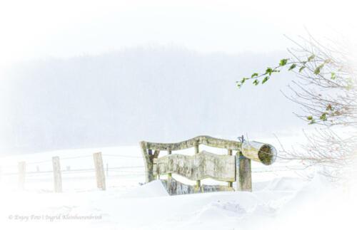 Winter in Vasse