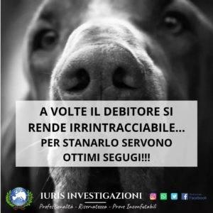 Agenzia Investigativa-Vaglio Basilicata