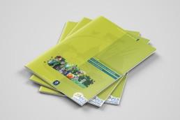 APES circuits alimentaires coopératifs et consommateurs