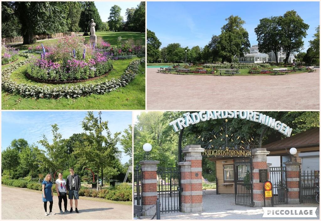 Trädgårdsföreningen (haveforeningen)