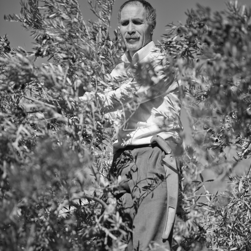 farmer castel ritaldi