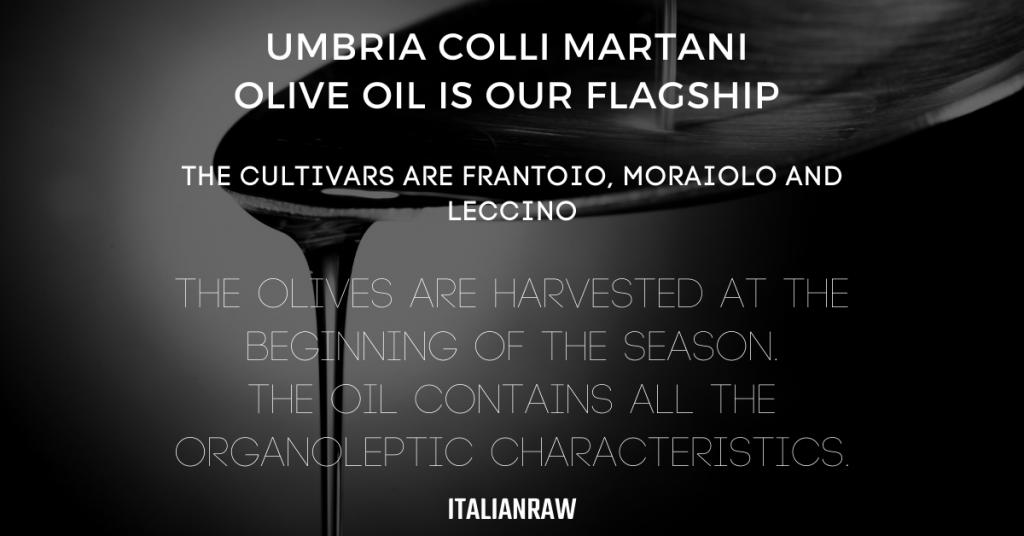 italianraw olive oil proposal
