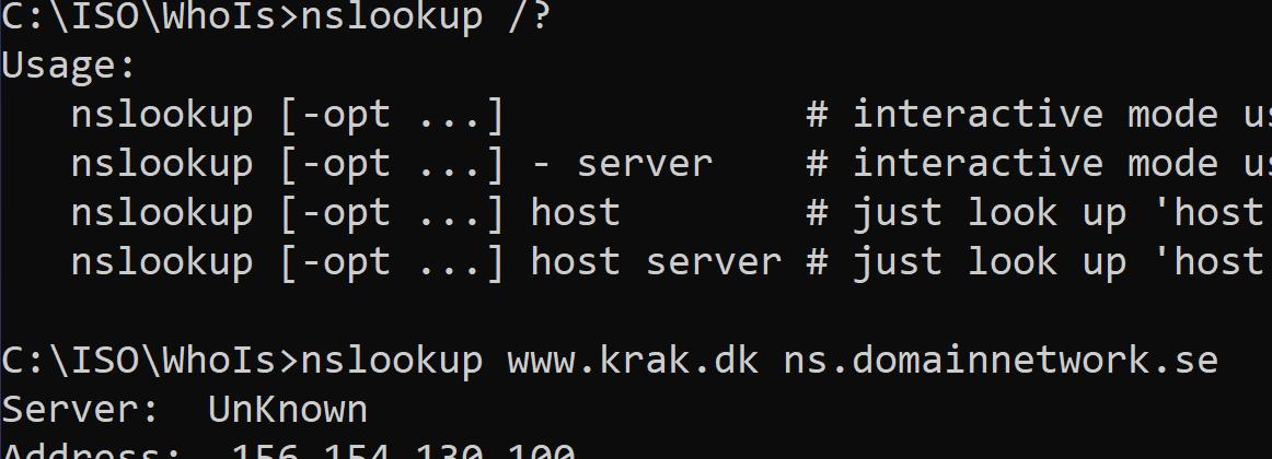 DNS NS Lookup