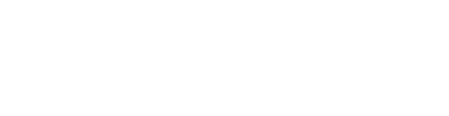 IV-GO_logoW