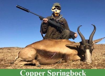 Copper1589381194