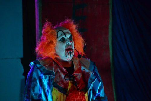 House of horror 12