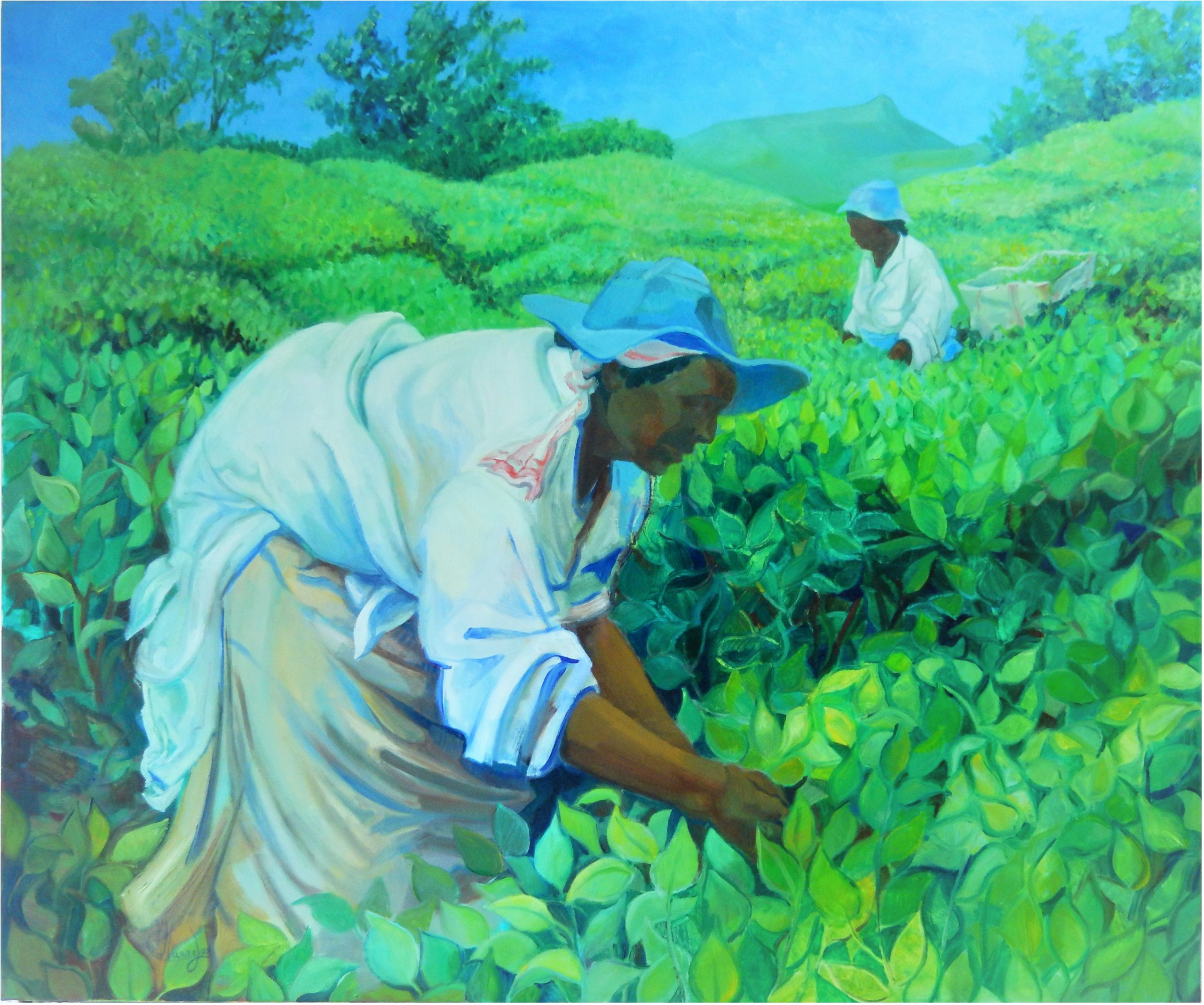 632 ceuilleuzes de thé