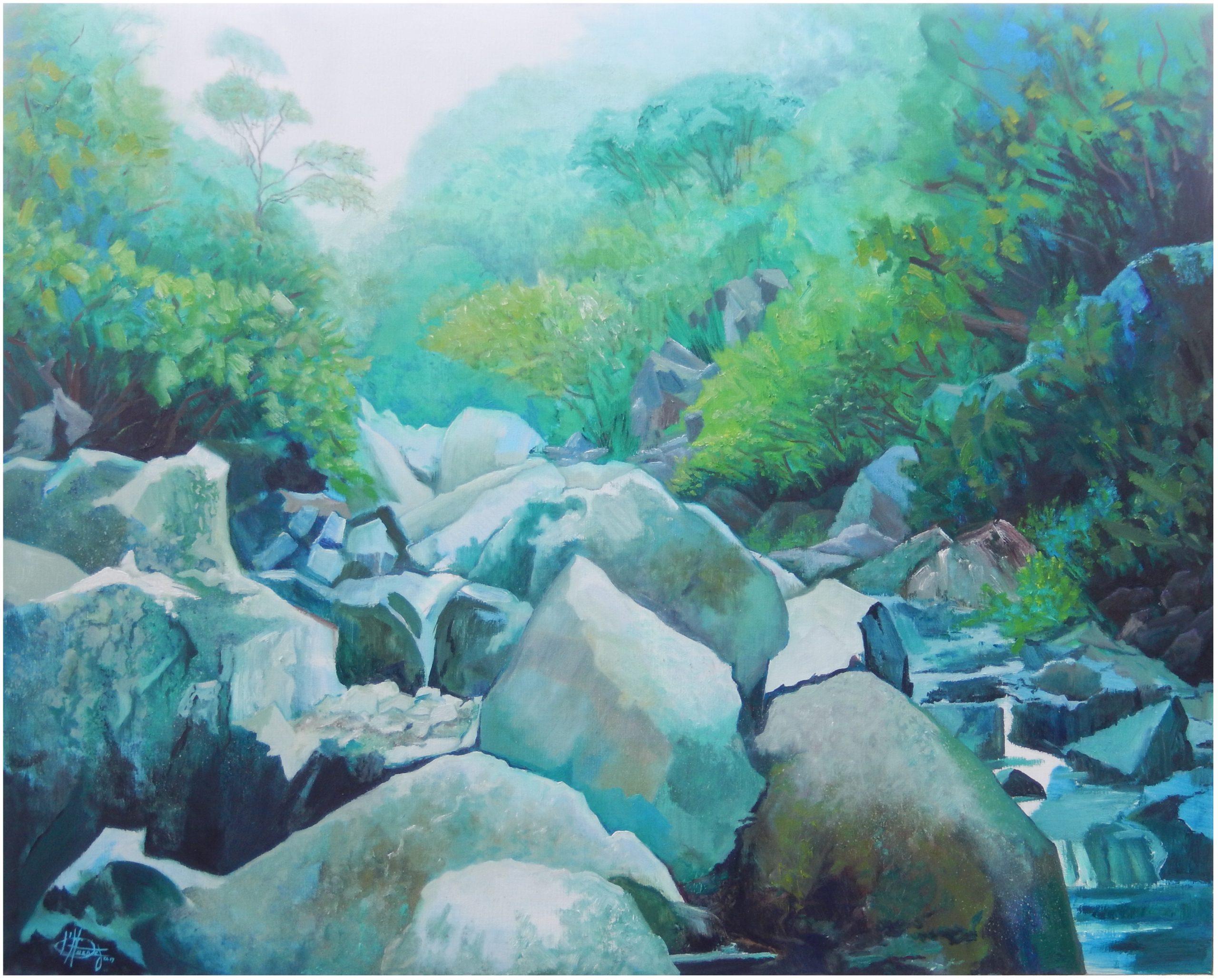 759 rivier in regenwoud