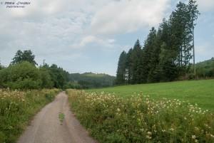 Van Brilon naar Bruchhausen