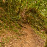 Eisleck trail etappe 5 – Nadrin – La Roche-en-Ardenne