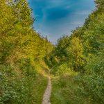 Eisleck trail etappe 4 – Houffalize-Nadrin
