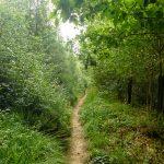 GR 15 – Monschau – Arlon