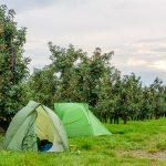 De streek GR Haspengouw – Fruit in de kijker!
