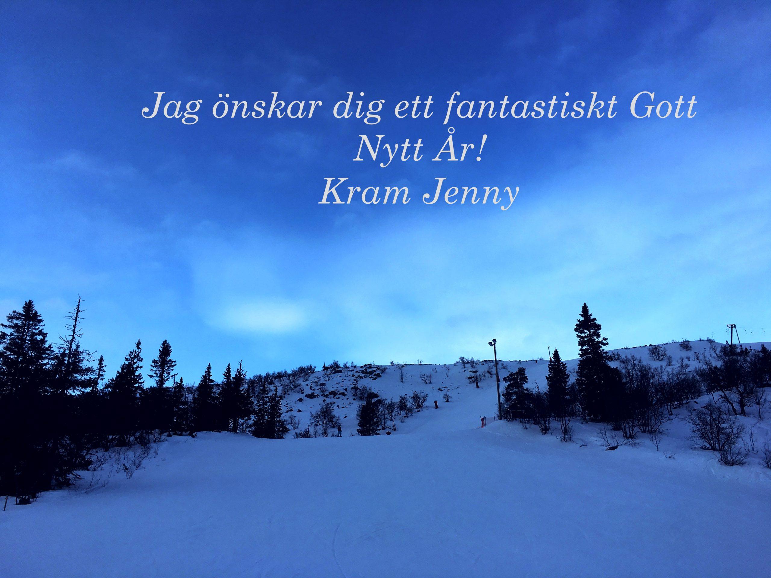 Läs mer om artikeln Gott Nytt År!