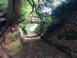peace calm relax bridge path