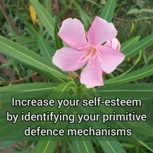 Increase your self-esteem by identifying your primitive defense mechanisms