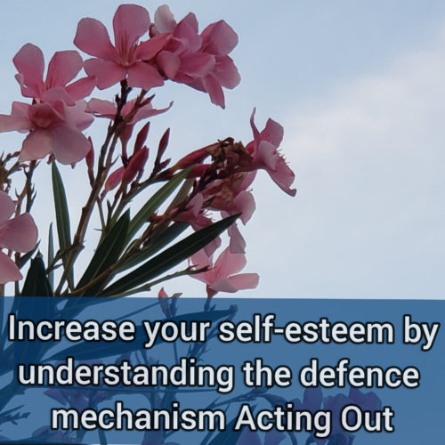 Increase your self-esteem by understanding the primitive defense mechanism acting out