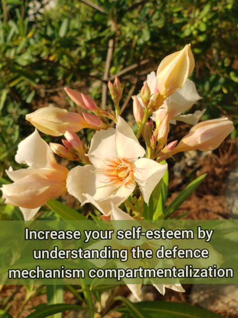 Increase your self-esteem by understanding the defense mechanism Compartmentalization