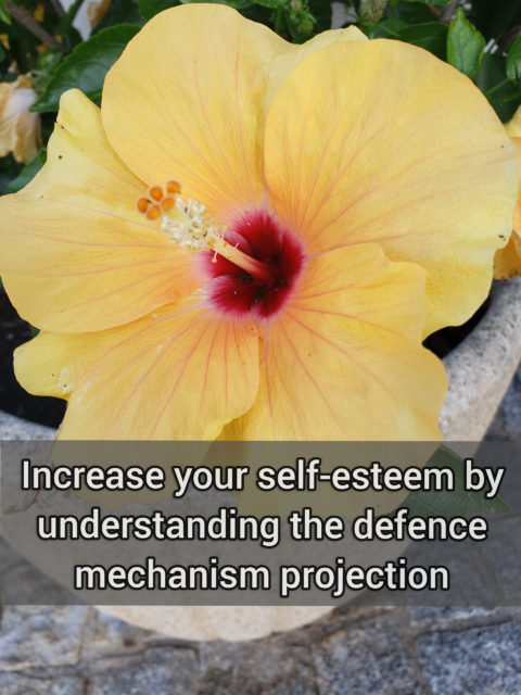 Increase your self-esteem by understanding the primitive defense mechanism projection