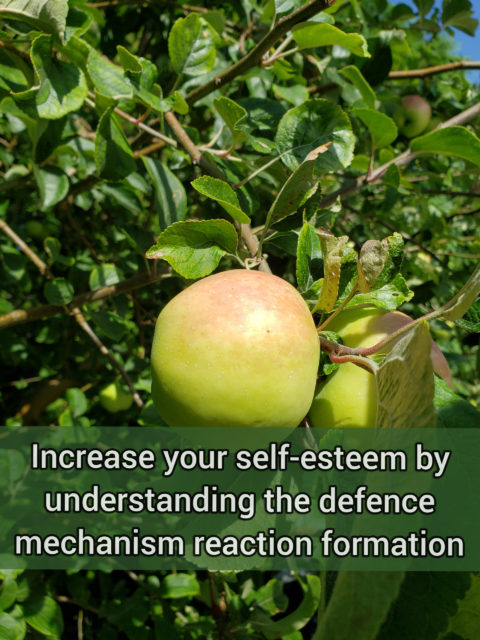 Increase your self-esteem by understanding the moderately primitive defense mechanism reaction formation
