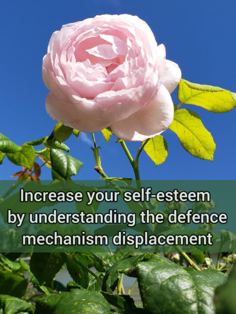 Increase your self-esteem by understanding the moderately primitive defense mechanism displacement
