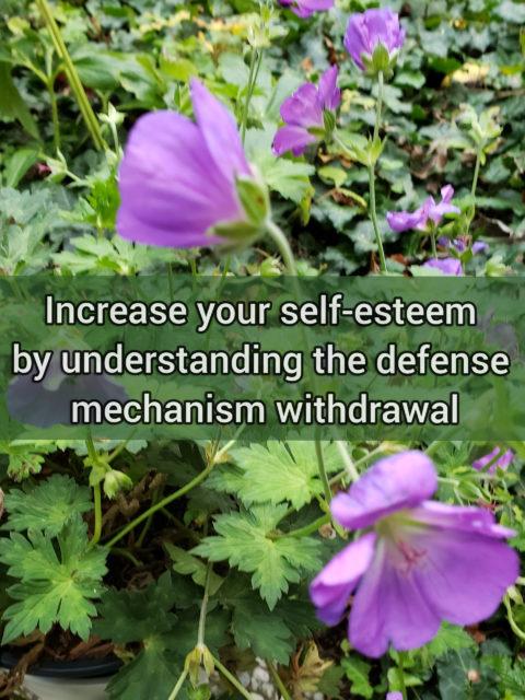 Increase your self-esteem by understanding the primitive defense mechanism withdrawal