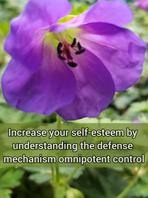 Increase your self-esteem by understanding the primitive defense mechanism omnipotent control