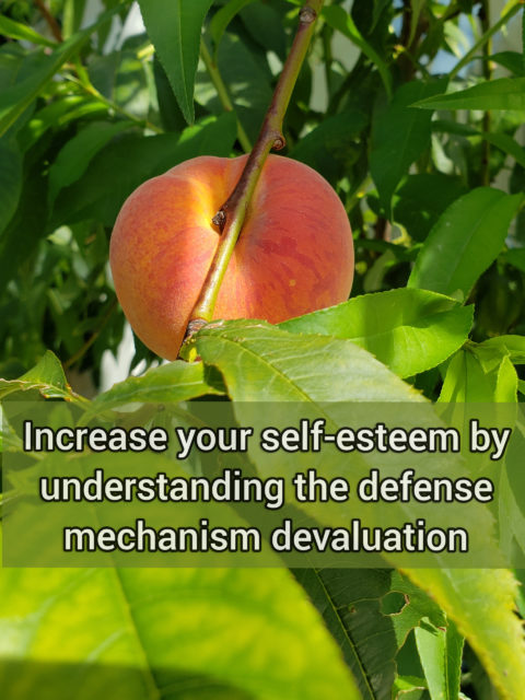Increase your self-esteem by understanding the primitive defense mechanism devaluation
