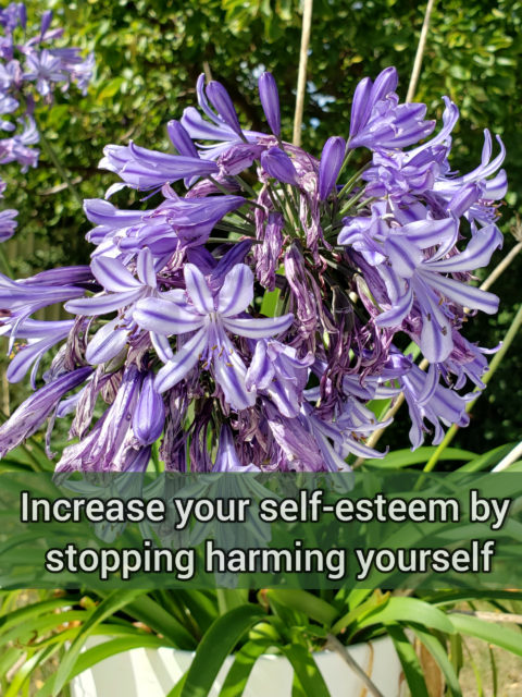 Increase your self-esteem by stopping harming yourself