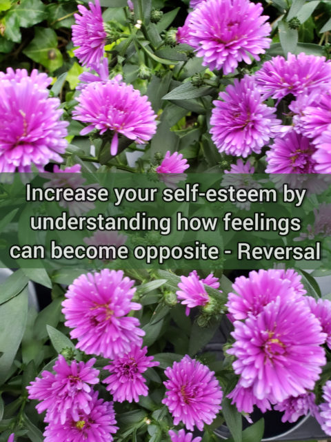 Increase your self-esteem by understanding how feelings can become opposite - Reversal