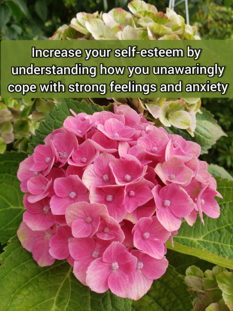 Increase your self-esteem by understanding how you cope with strong feelings and anxiety