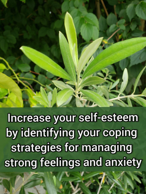 Identify your coping strategies for managing strong feelings and anxiety