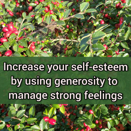 Increase your self-esteem by using generosity to manage strong feelings