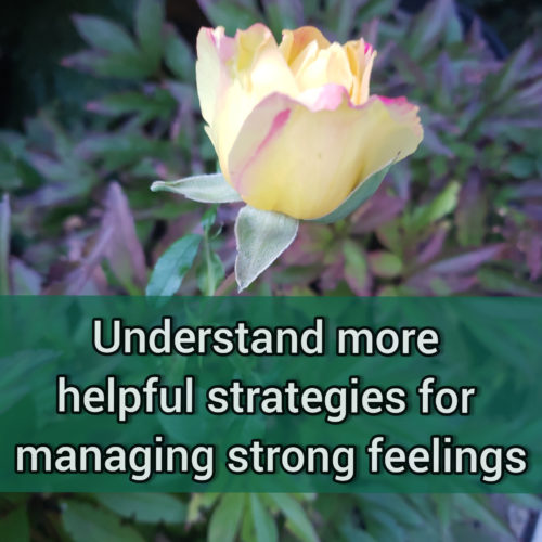 More about somewhat helpful strategies we use to manage strong feelings