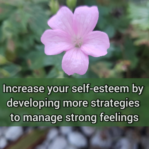 Isolation - a somewhat helpful strategy we use to manage strong feelings
