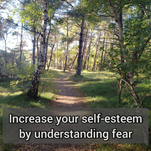 Increase your self-esteem by understanding fear