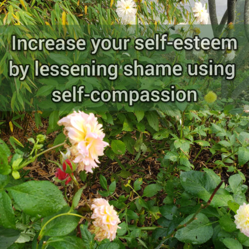 Increase self-esteem by lessening shame using self-compassion