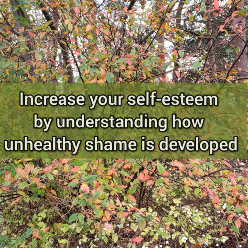 Increase your self-esteem by understanding how unhealthy shame is developed