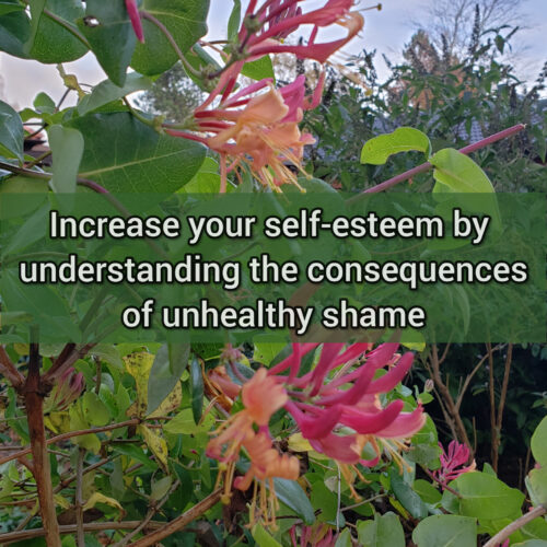 Increase your self-esteem by understanding the consequences of unhealthy shame