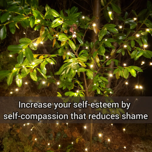 Increase your self-esteem by self-compassion that reduces shame