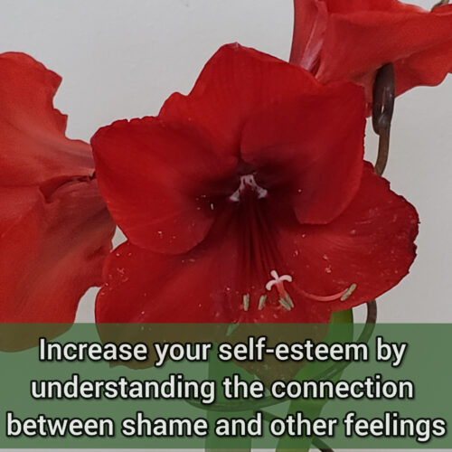 Increase your self-esteem by understanding the connection between shame and the other feelings