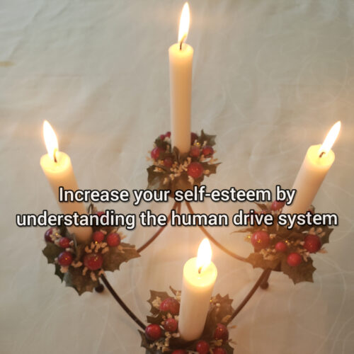 Increase your self-esteem by understanding the human drive system