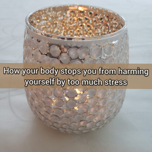 How your body stops you from harming yourself by too much stress