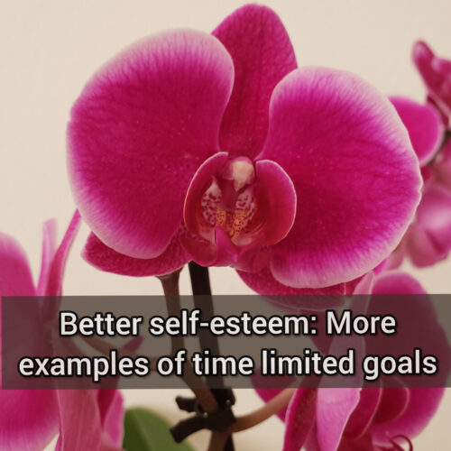 Better self-esteem: More examples of time limited goals