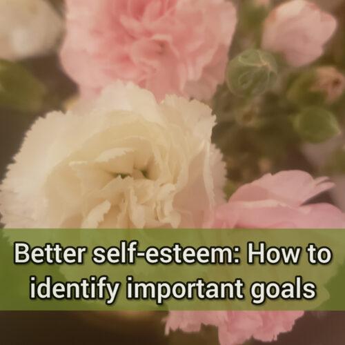 Better self-esteem: How to identify important goals
