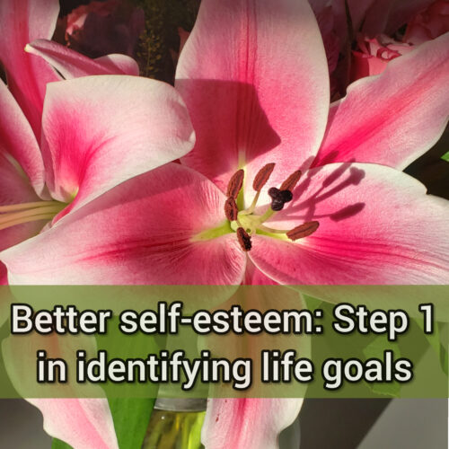 Better self-esteem: Step 1 in identifying life goals