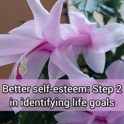Better self-esteem: Step 2 in identifying life goals