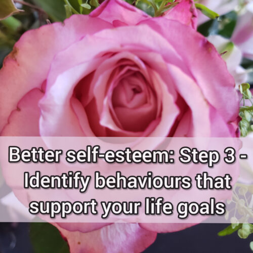 Better self-esteem: Step 3 - Identify Behaviours that support your life goals