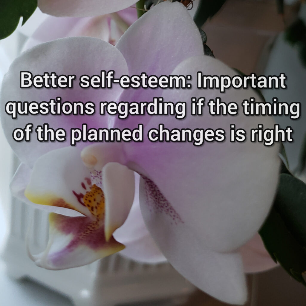 Better self-esteem: Important questions regarding if the timing of the planned changes is right