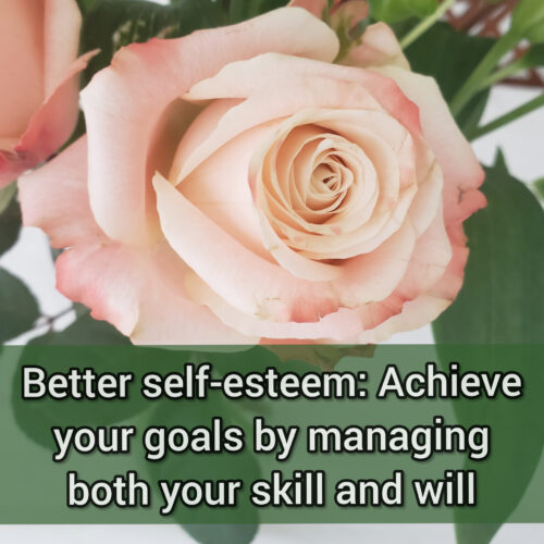 Better self-esteem: Achieve your goals by managing both your skill and will
